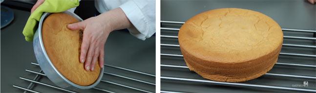 Ricetta pan di spagna, come estrarre il pan di spagna