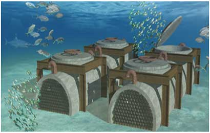 cantina-sottomarina