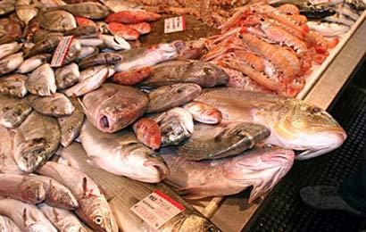 spigole-pesce