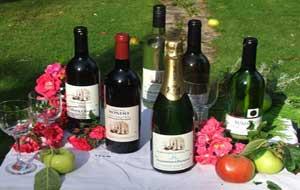 vini-inglesi