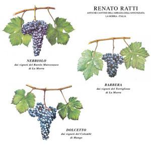 ratti_vitigni_piemontesi1
